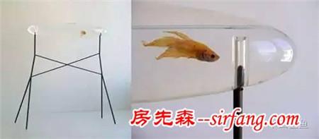 世界上最奇葩的鱼缸都在这里了,你见过几个?
