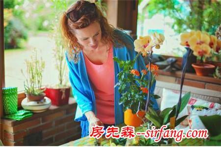 家中养什么花好 这些花即美观又舒心养生