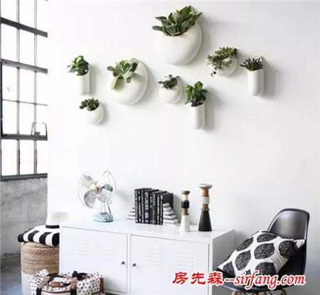 室内植物如果这样栽出来,逼格那是相当高的,6种免费设计拿走!