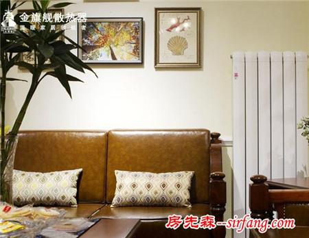 客厅暖气片安装效果图 让客厅设计更加出彩
