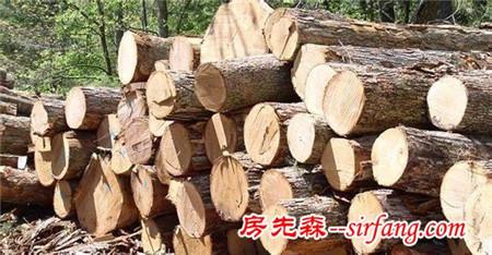 实木和原木有什么区别?这个区别还挺明显的