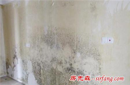 墙壁发霉,室内潮湿不用怕!正确选用硅藻泥家装放心更健康