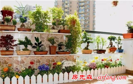 如何在冬天照顾你的盆栽?