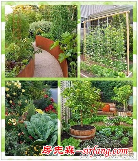 别样设计——别墅花园变菜园后更美了