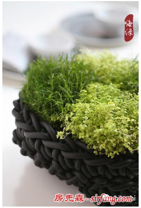 超美!旧物DIY变身多肉植物花器!
