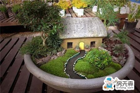 苔藓盆景 让你的家居空间美不胜收
